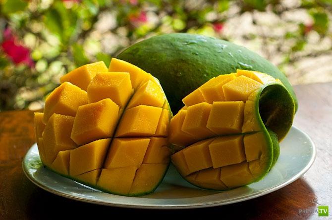выбора термобелья можно ли вывозить фрукты из мальдив очень комфортное