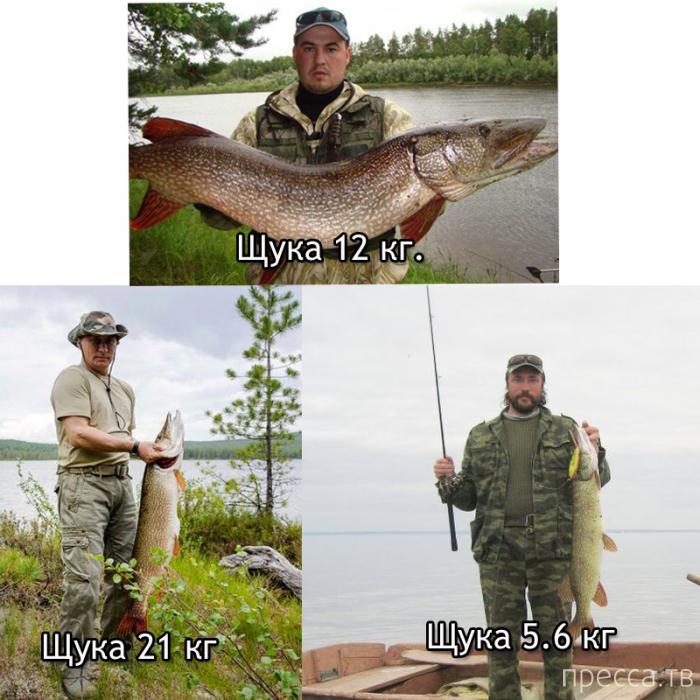 путин на рыбалке на щуку