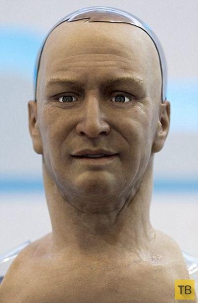 Новый реалистичный робот Хэм на выставке в Гонконге (7 фото)