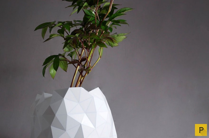 Горшки растут вместе с цветами (7 фото)