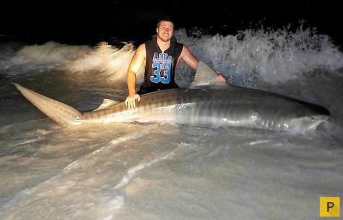 где рыбалка на акул