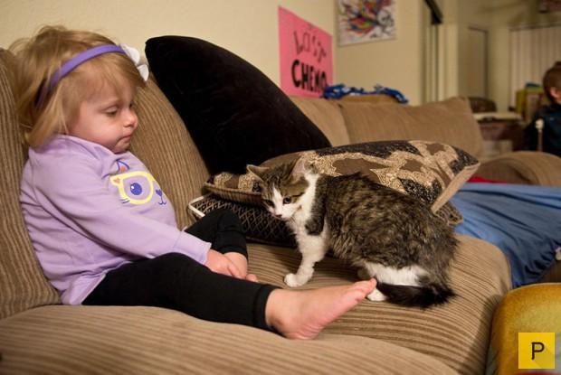 Девочка без руки и котенок (7 фото)