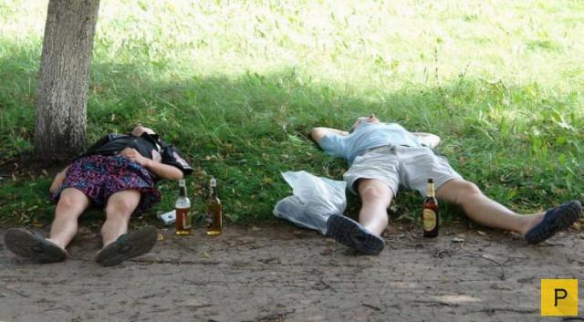 Пьяные на природе фото