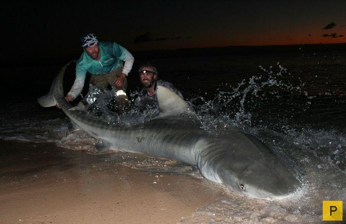австралийские рыбаки