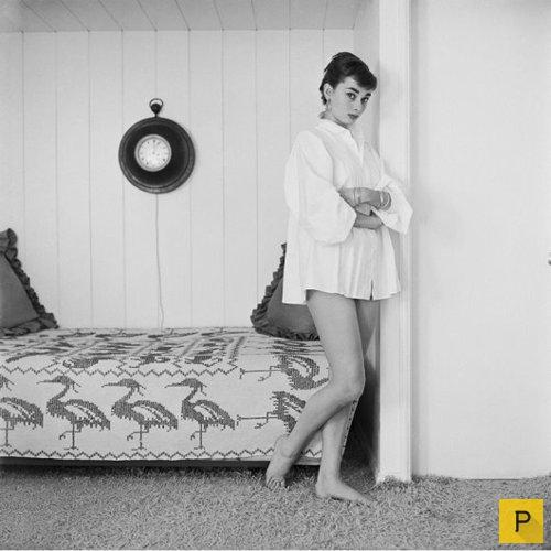 What was Audrey Hepburns first language  Antimoon Forum