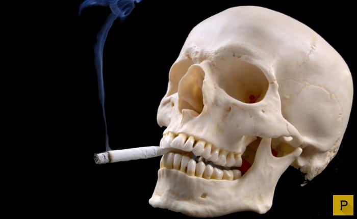 Книга алена кара легкий способ бросить курить читать