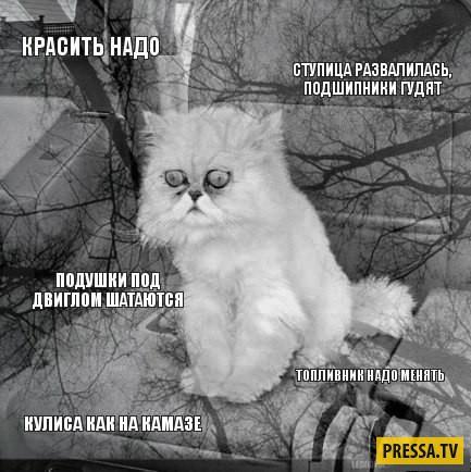 konchayushaya-lesbi