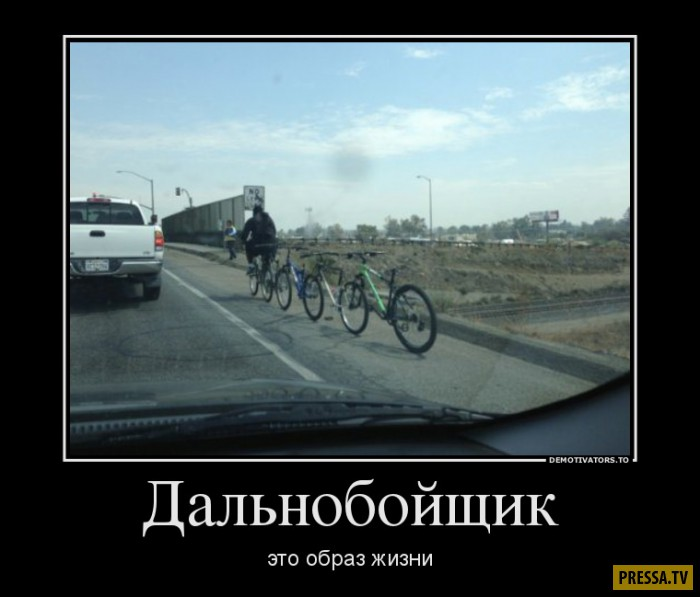 Демотиваторы от 08.11.2016 (43 фото)