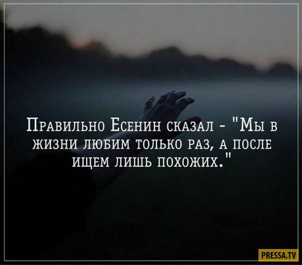Дай Андрей Поводырь  samlibru