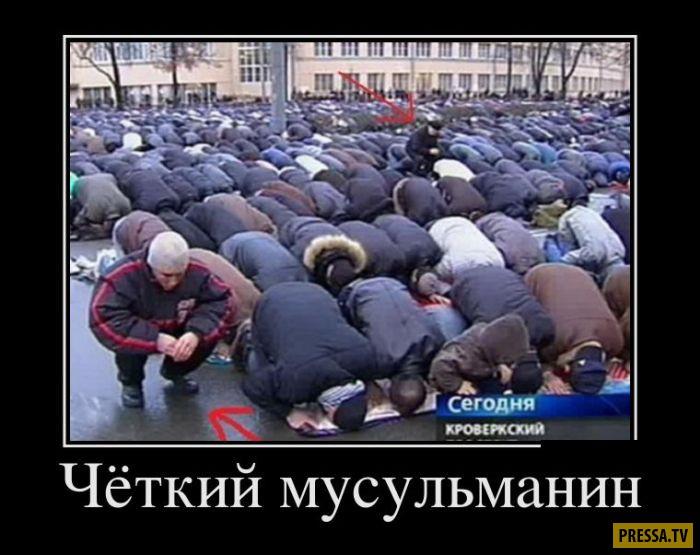 Демотиваторы от 05.12.2016 (50 фото)
