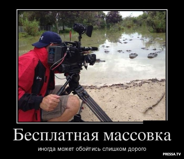 Демотиваторы от 15.12.2016 (45 фото)