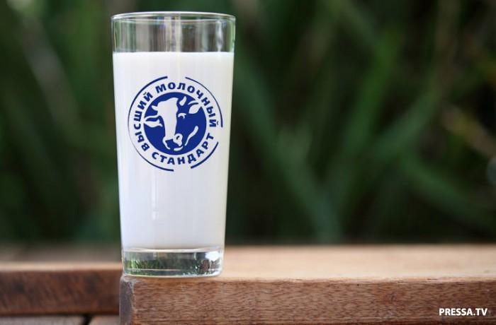 Культура потребления молока в разных странах (10 фото)