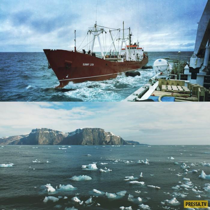 Необычный улов Мурманского моряка Романа Федорцова (65 фото)