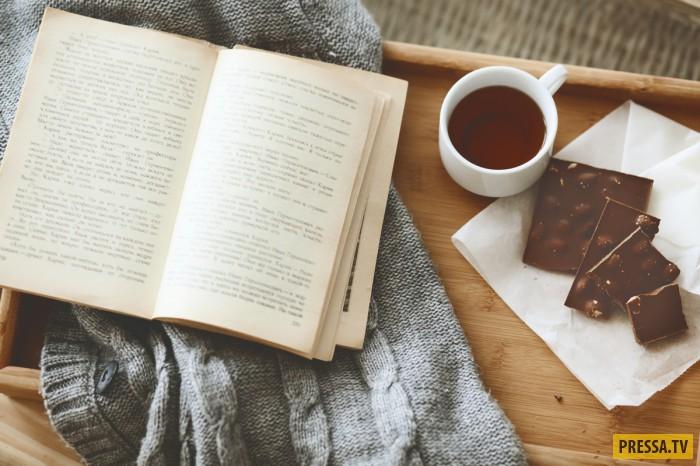 Топ 10: Увлекательные книги, от которых невозможно оторваться (11 фото)
