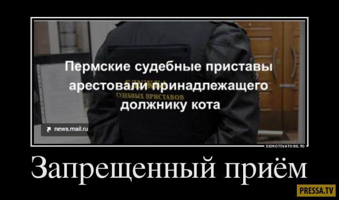 Демотиваторы от 21.12.2016 (46 фото)