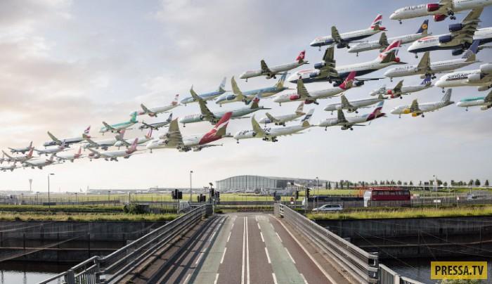 Если бы самолеты летали стаями, как птицы (20 фото)