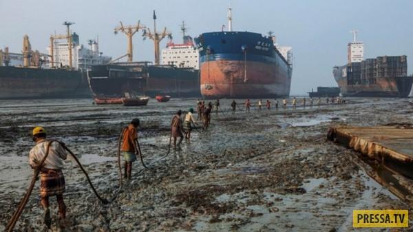 Как устроена утилизация гигантских кораблей (12 фото)