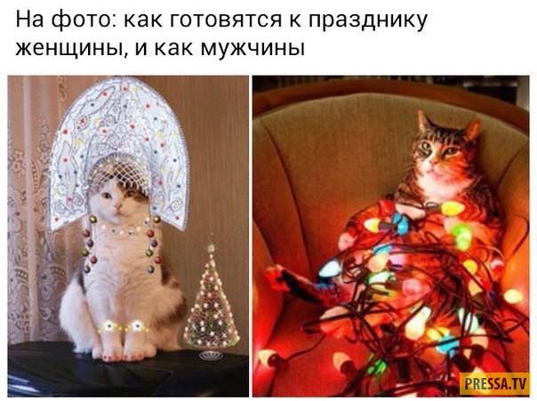 Жизненные приколы в картинках (31 фото)