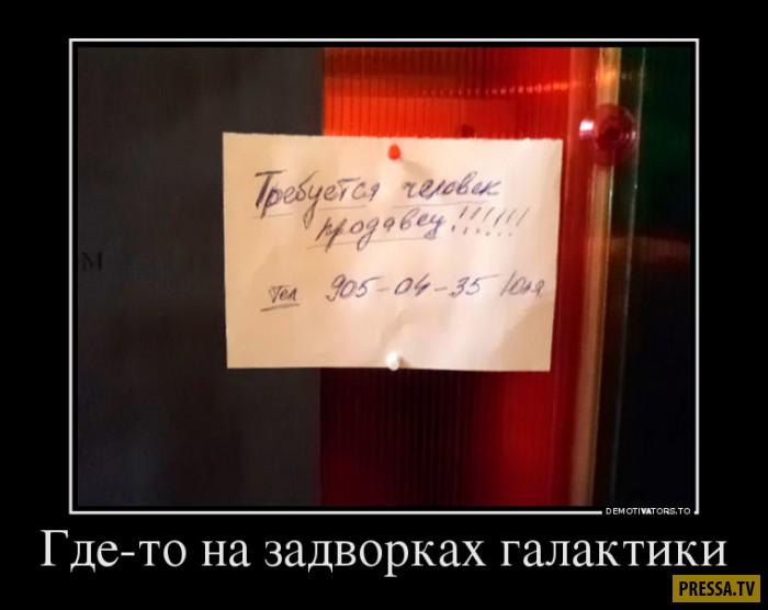 Демотиваторы от 26.12.2016 (53 фото)