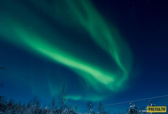Где можно наблюдать северное сияние (10 фото)