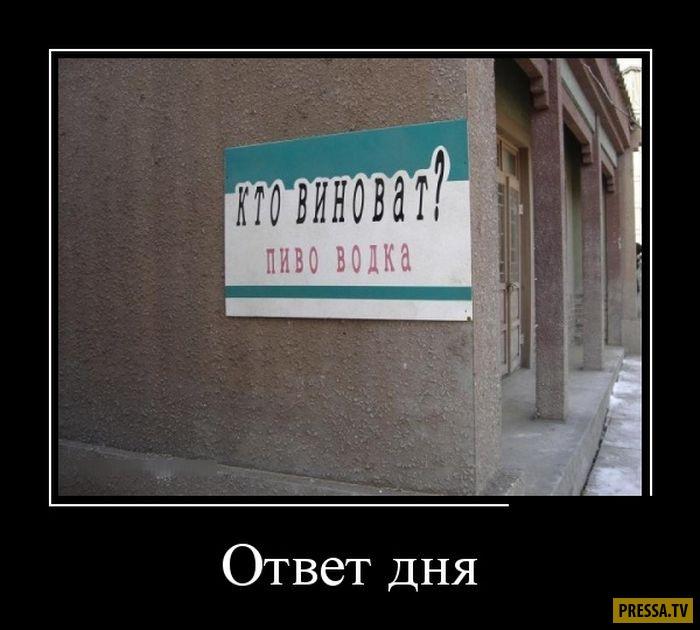 Демотиваторы от 27.12.2016 (46 фото)