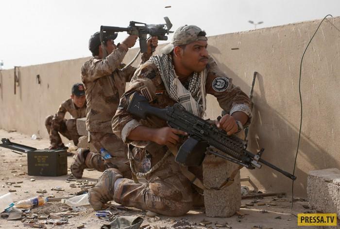 Интересные снимки 2016 года от военного фотографа (24 фото)