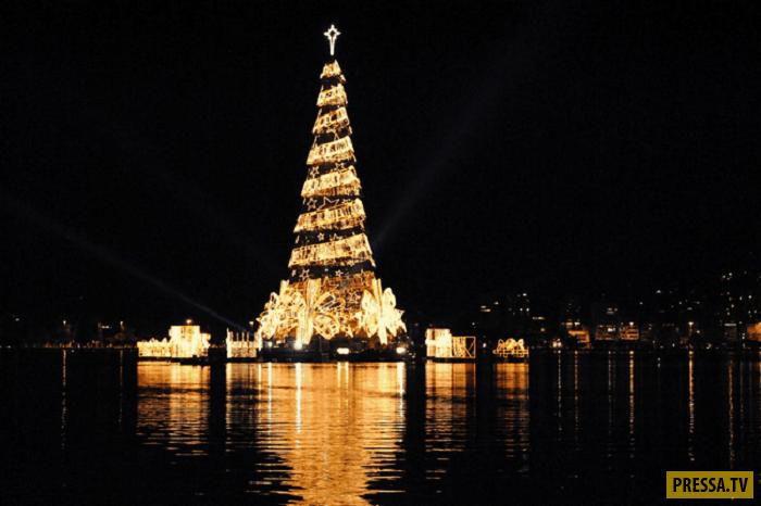 Топ 20: Самые необычные новогодние елки (21 фото)