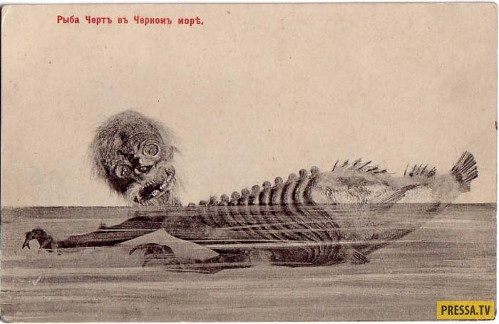 Топ 6: Места, где можно увидеть русалок (12 фото)