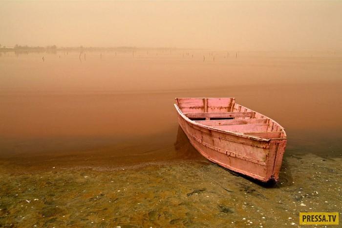 Озеро Натрон является самым щелочным водоемом в мире (18 фото)