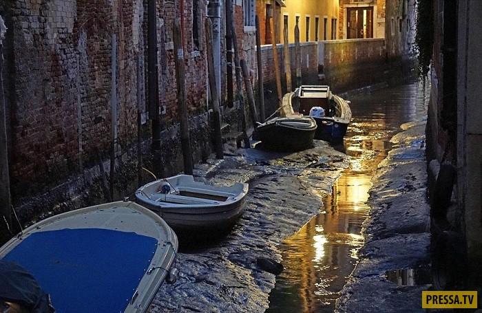 Каналы Венеции остались без воды (7 фото)