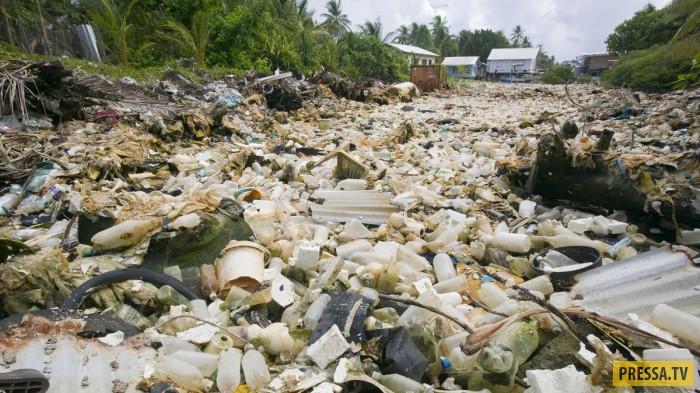 Модные курорты не справляются с переработкой мусора (24 фото)
