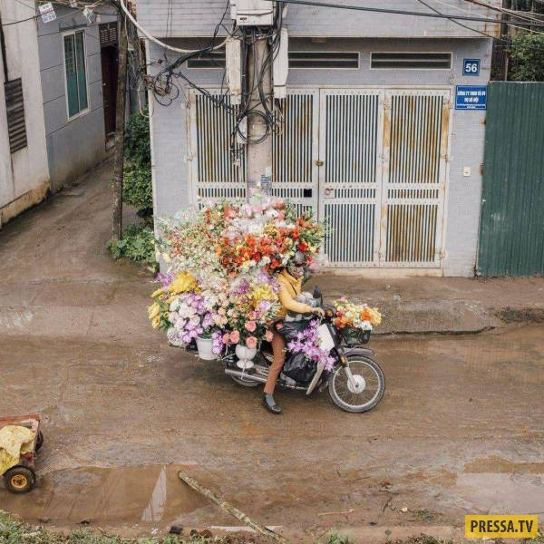 Забавные фотографий со всего света, часть 33 (111 фото)
