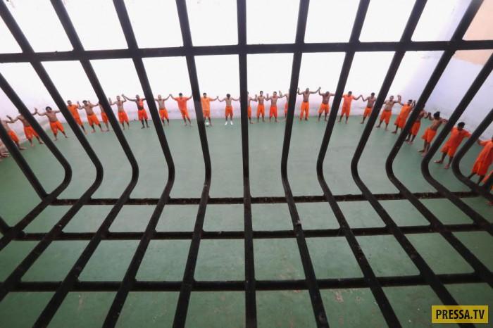 Тюремный комплекс Pedrinhas в Бразилии (20 фото)