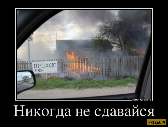 Демотиваторы от 06.02.2017 (50 фото)