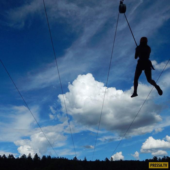 Красочные фотографии - победители детского конкурса журнала «National Geographic» (15 фото)