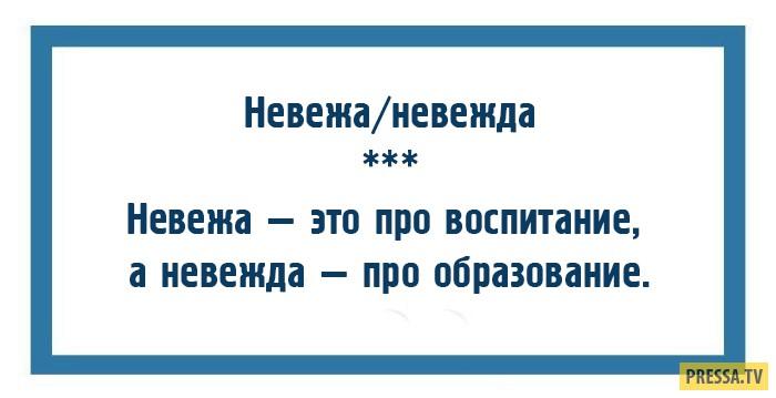 Слова, по которым легко определить уровень культуры (10 фото)