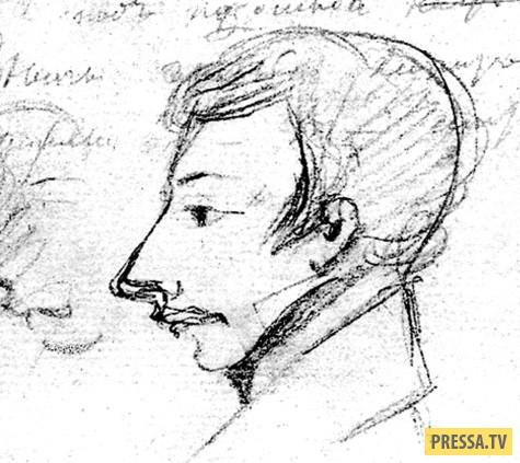 Последняя дуэль Пушкина (8 фото)