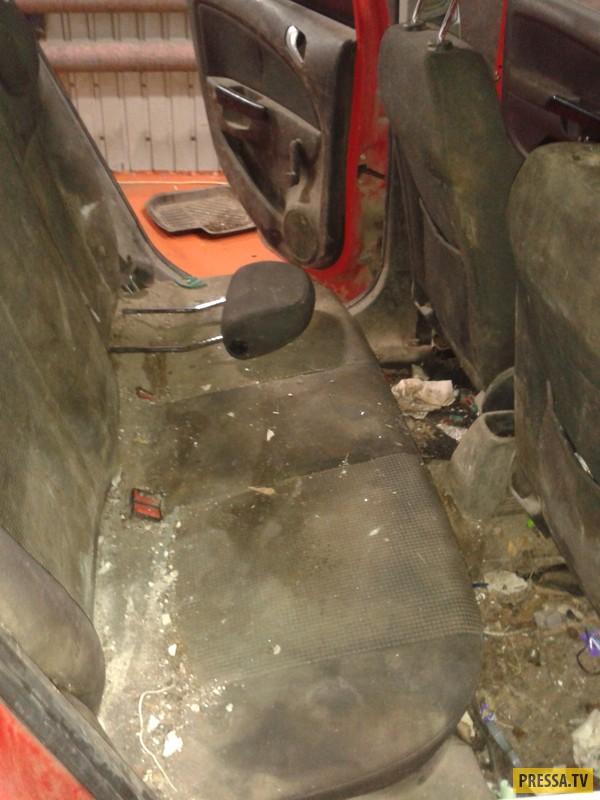 Вот такой автомобиль приехал на Мойку (4 фото)