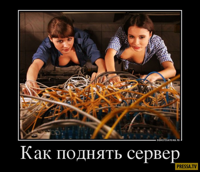 Новые демотиваторы (48 фото)