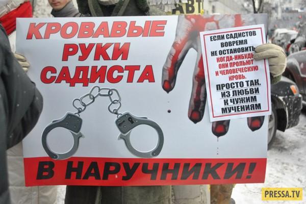 Хабаровские живодёрки заявили, что сожалеют о совершённых убийствах (2 фото)