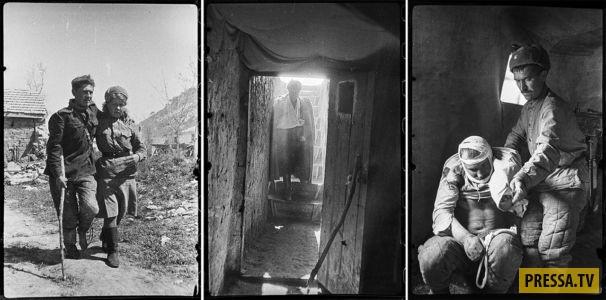Неопубликованные ранее снимки Крыма во время Великой Отечественной войны (25 фото)