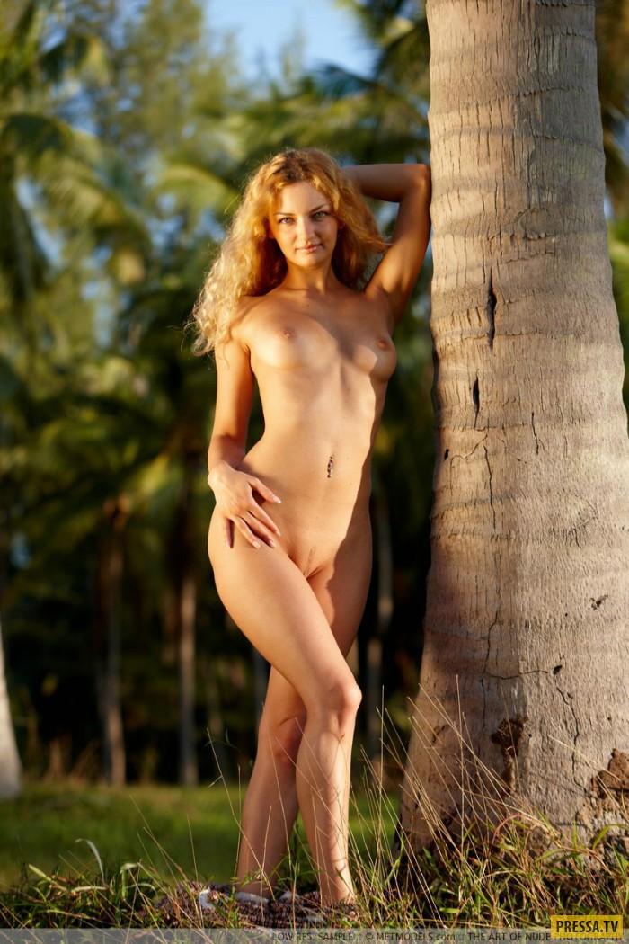 Кудрявая Lizi  в лесу (15 фото)