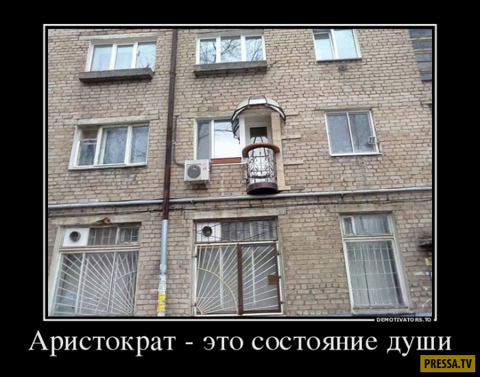 Демотиваторы (44 фото)