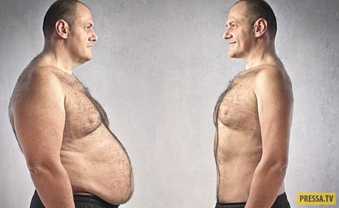 Простые и проверенные способы держать тестостерон в норме (7 фото)
