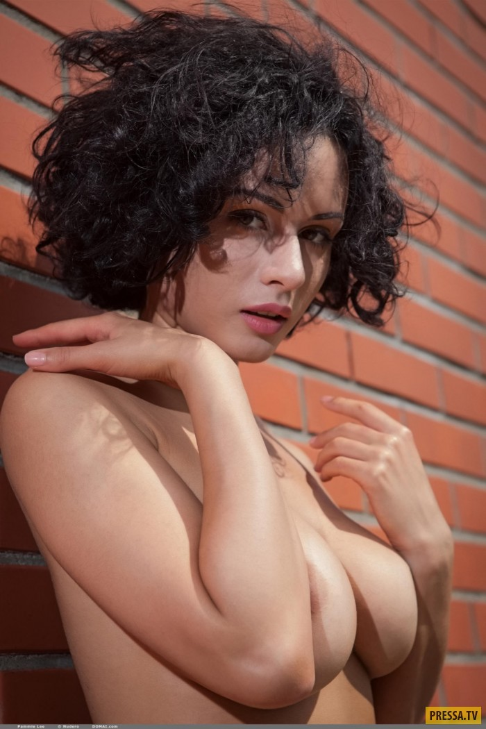 Стройная Pammie Lee с большой красивой грудью (13 фото)