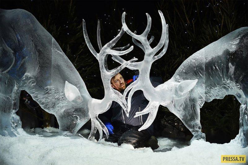 Невероятные ледяные скульптуры Даррена Джексона (9 фото)