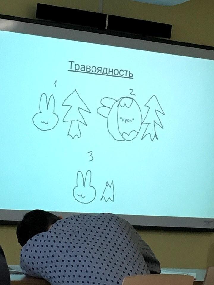Пожалуй лучшая презентация по биологии