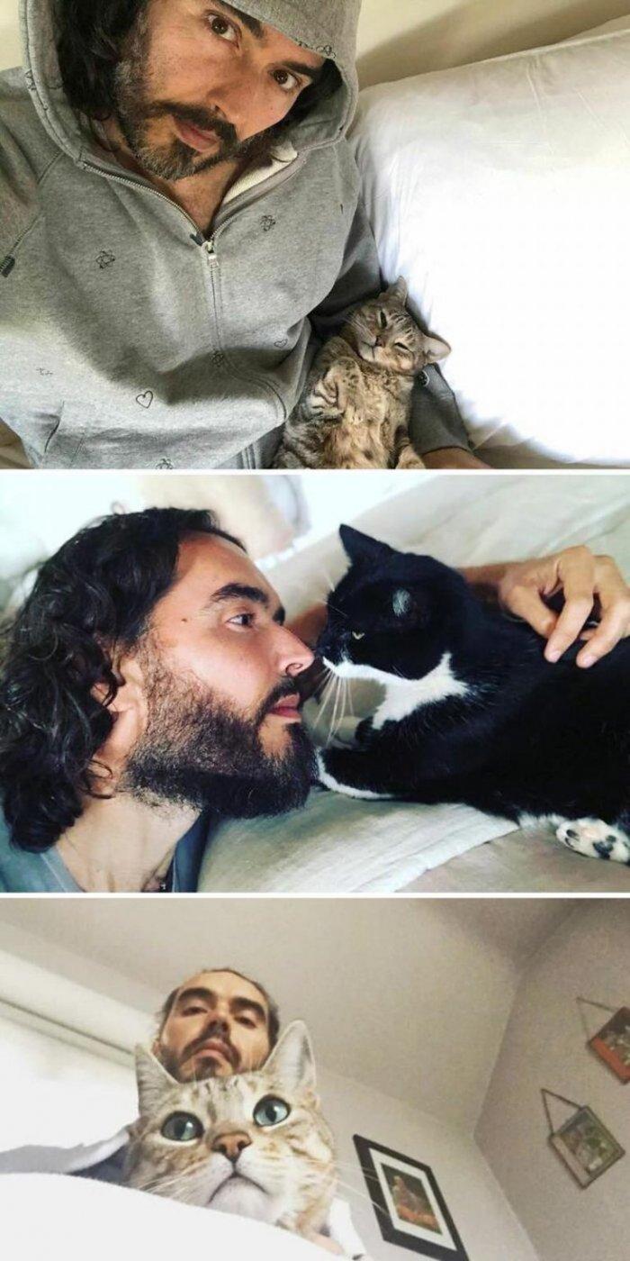 Знаменитости, которые обожают своих кошек