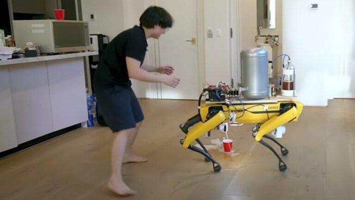 Робот-собака писает пивом в стакан