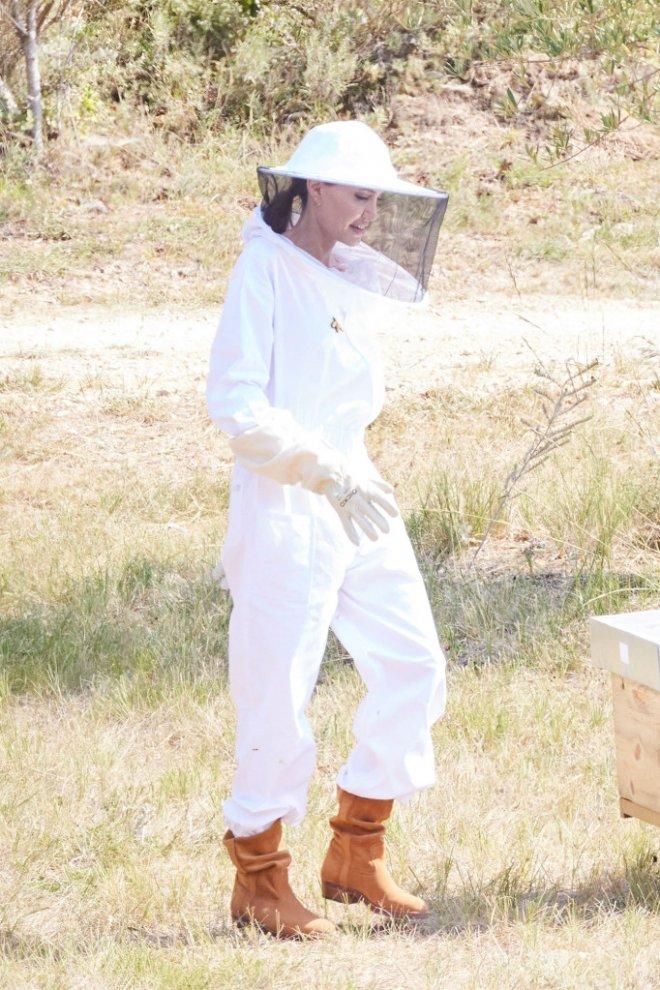 Самый гламурный пчеловод - Анджелина Джоли во Франции